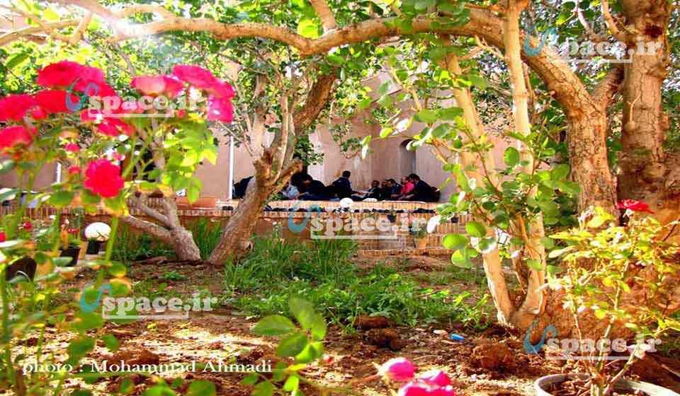نمایی دل انگیز از حیاط و حوضچه به همراه گلدان های زیبا