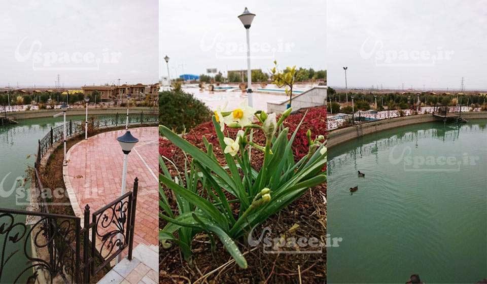 محوطه و استخر زیبای هتل نارنجستان